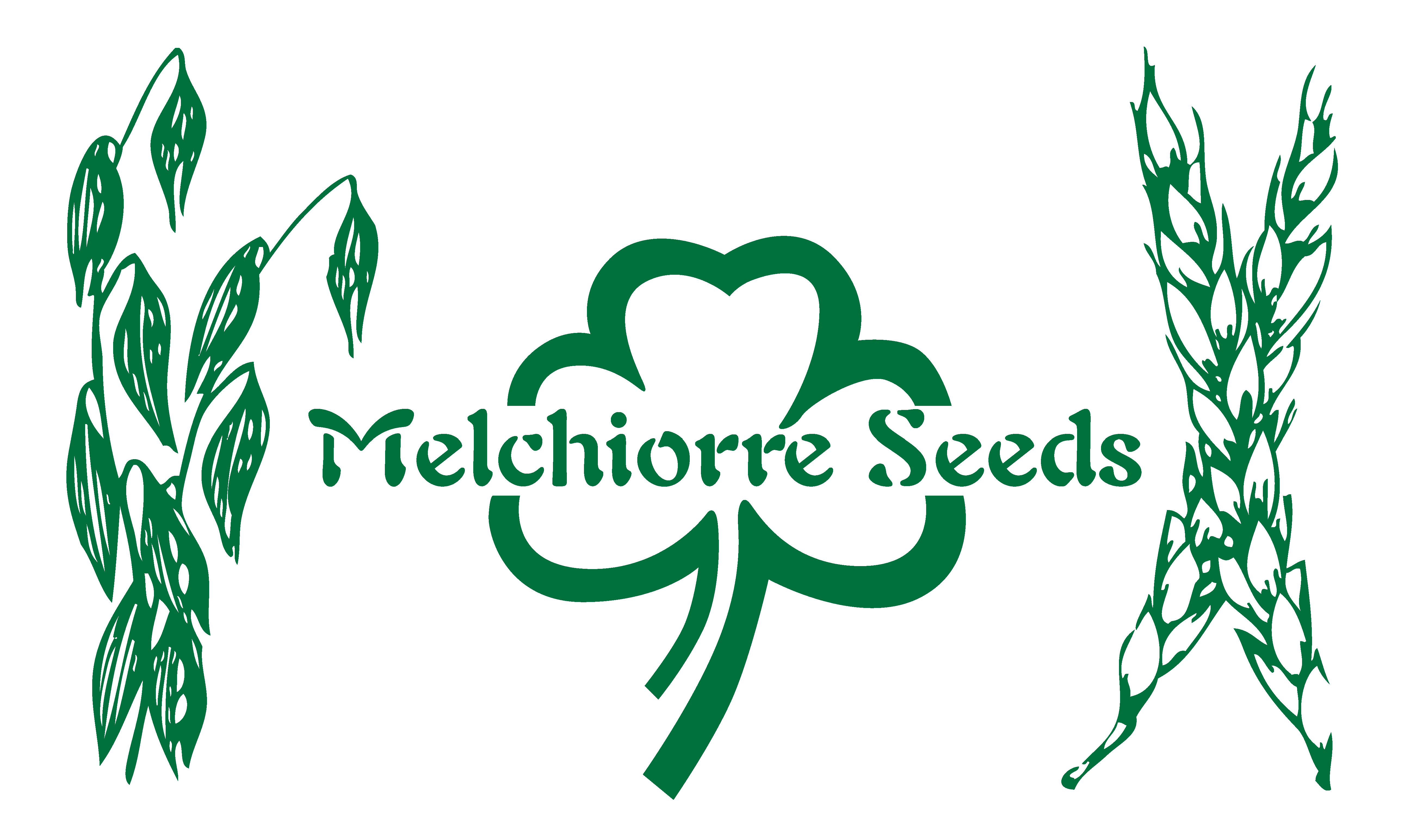 Melchiorre Seeds Website